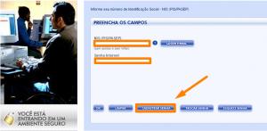 Consultar PIS pela Internet site