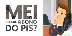 Mei tem direito a receber o abono salarial do PIS?