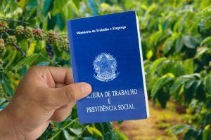 Trabalhador rural tem direito ao PIS